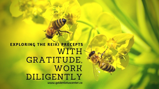 gratitude, reiki, thankfulness, work diligently, practice diligently, golden lotus center, goldenlotuscenter.ca, mikao usui, usui reiki ryoho, 5 reiki precepts, 5 reiki principles, just for today, do not anger, do not worry, with thankfulness work diligently, be kind to others, golden lotus center, krystle ash, reiki articles, reiki master, reiki teacher, reiki training, reiki edmonton, reiki healing