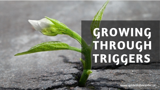 growing through triggers, personal growth, shadow work, reiki, spiritual growth, transformation, anxiety, depression, ptsd, energy healing, reiki, reiki master, learn reiki, golden lotus center, Krystle Ash, edmonton, alberta, canada